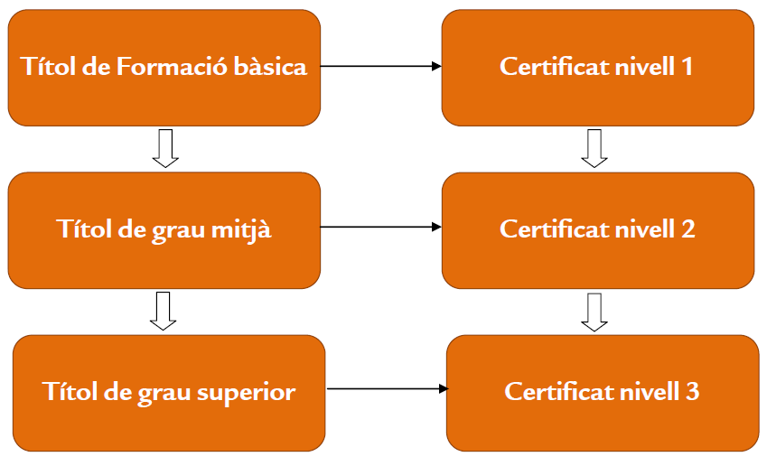 expedicio de certificats soib illes balears