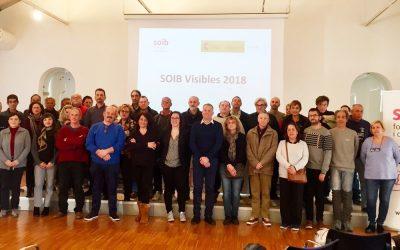 Comença la segona fase de SOIB Visibles 2018, programa gràcies al qual PalmaActiva contracta un total de 73 persones