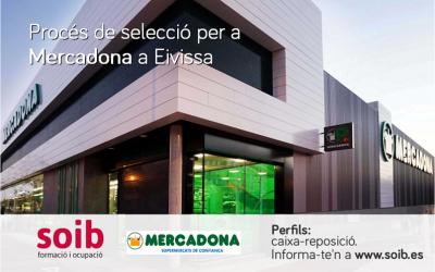Mercadona selecciona personal per a la temporada d'estiu a Eivissa