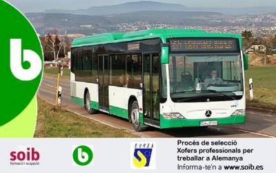 B-BUS GRUPPE selecciona xofers professionals d'autobús per treballar a diferents regons d'Alemanya